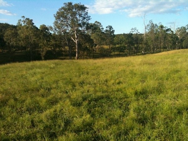 Lot 12 RP856530 Smith Creek Road, Vale View, Qld 4352