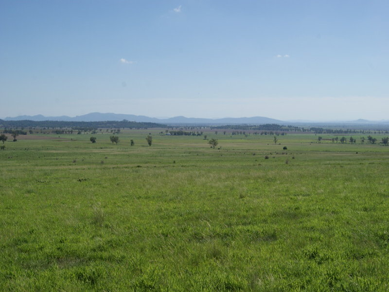 Preston Road, Gunnedah, NSW 2380