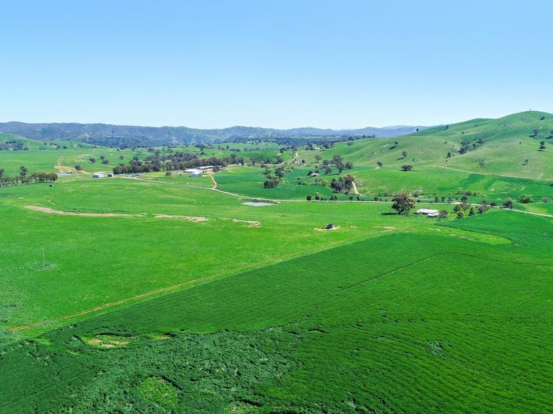 2755 Triamble Road, Mudgee, NSW 2850