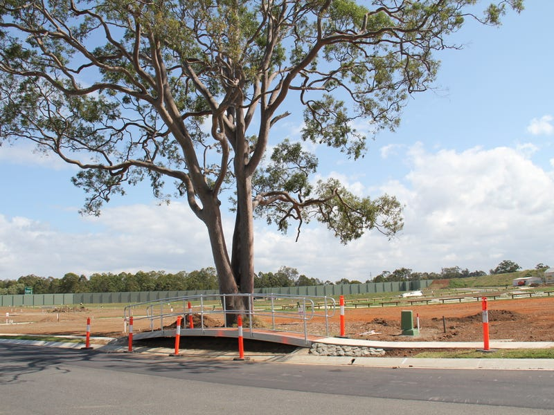 Lot 58, 41 George Circuit -Deepwater Estate, Bald Hills, Qld 4036