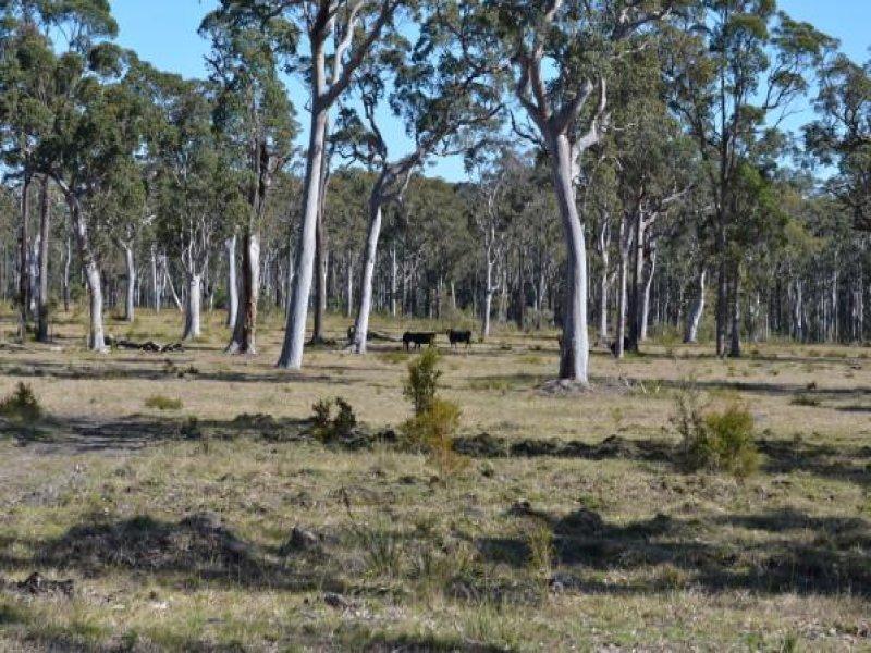 543 Nugra Lane, The Branch, NSW 2425