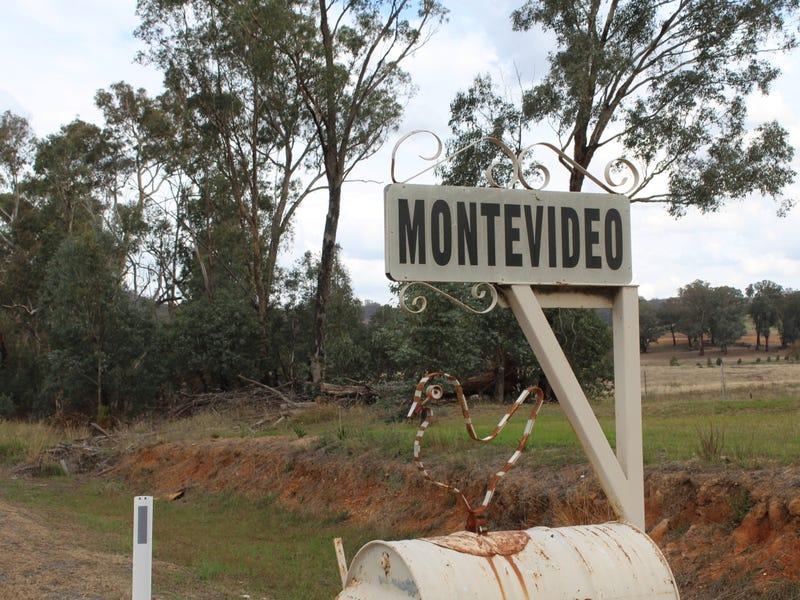 3825 TUMBARUMBA ROAD, Carabost, NSW 2650