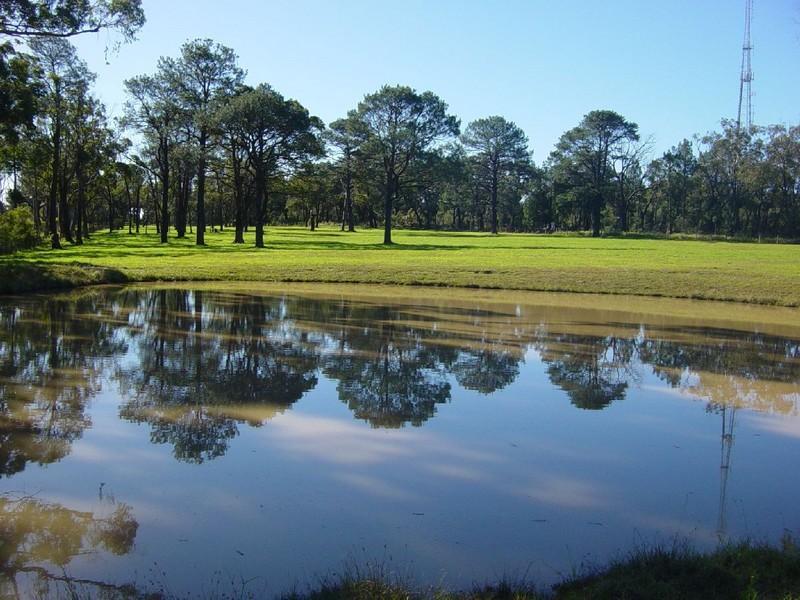51 Ulinga Road, Somersby, NSW 2250