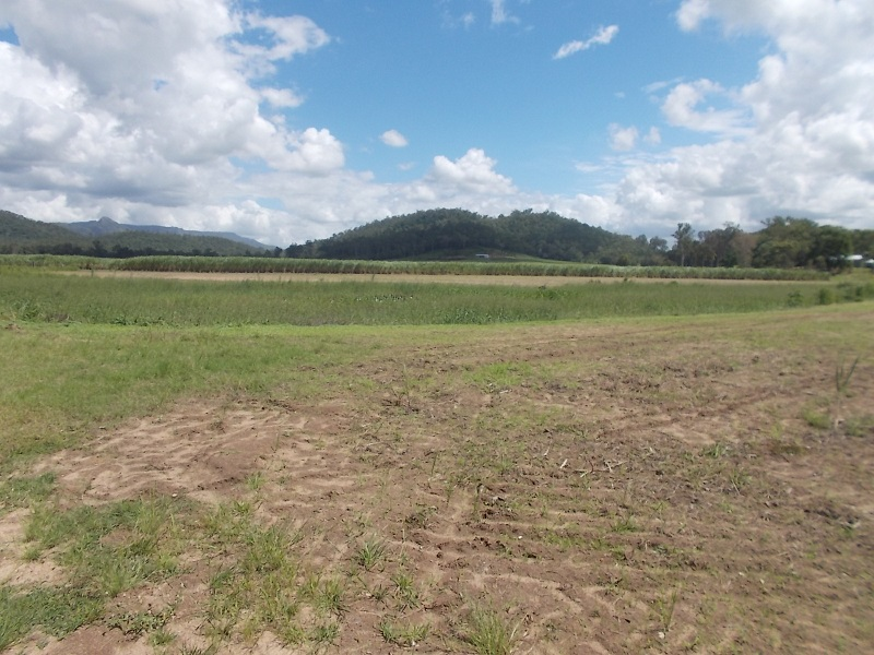 Lot 8 Abergowrie Road, Long Pocket, Qld 4850