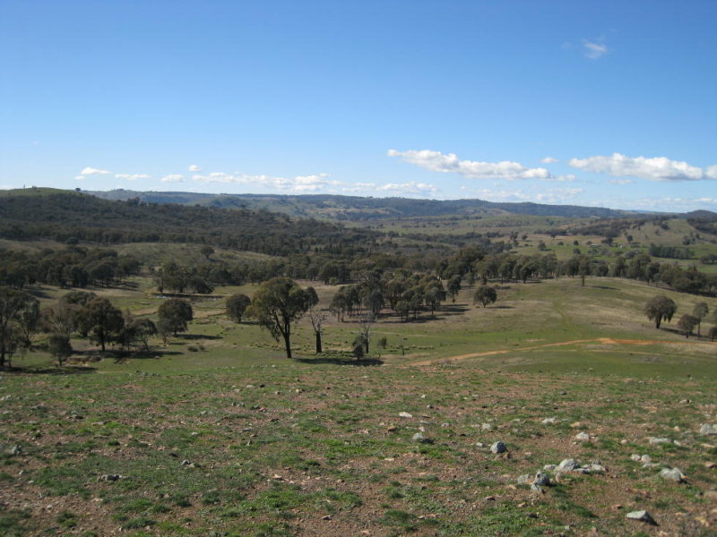 Block 4 The Willows, Boorowa, NSW 2586