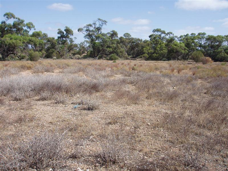 Section 96 Hd of Fisher, Swan Reach, SA 5354