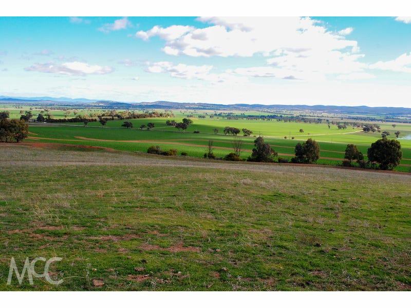 4550 Canowindra Road, Canowindra, NSW 2804
