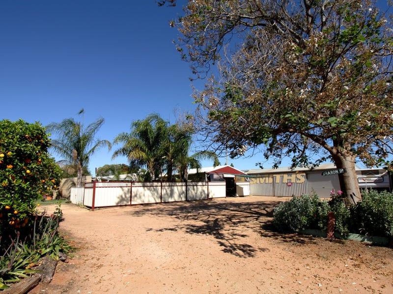 88 Davidson Road, Barmera, SA 5345