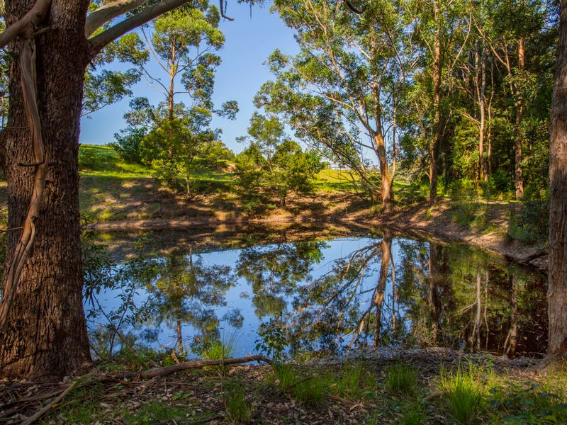 1110 Illaroo Road, Tapitallee, NSW 2540