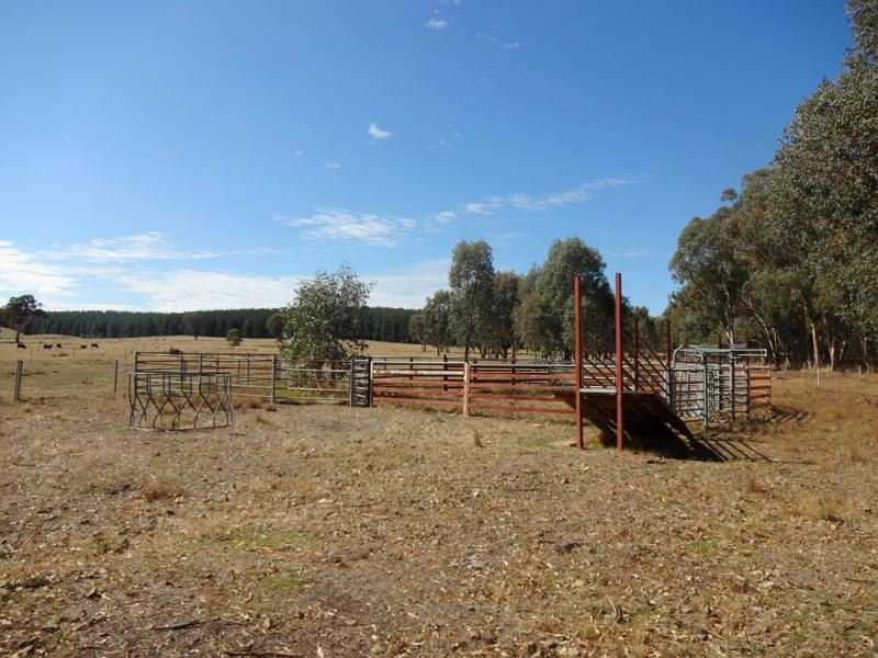 00 Moyhu-Meadow Creek Road, Meadow Creek, Vic 3678