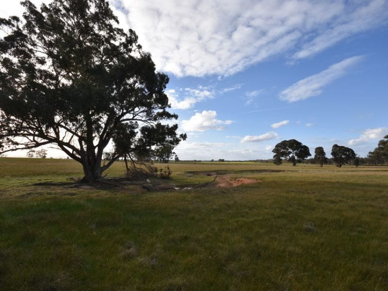 CA20 Three Chain Road, Natte Yallock, Vic 3465