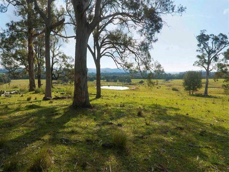 713 Pinebrush Road, Dungog, NSW 2420