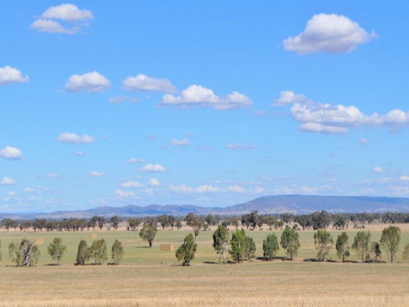 Henty-Walla Road, Culcairn, NSW 2660