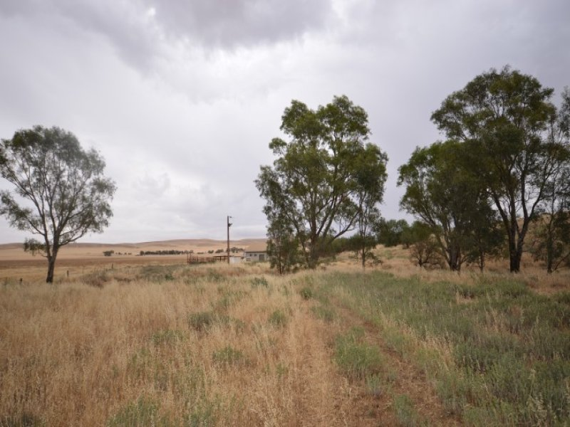 Lot 459 Govt Road, Burra, SA 5417