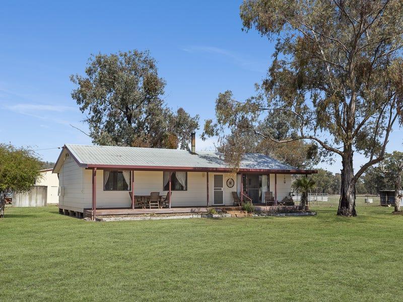 Mount Cobla, Currabubula, NSW 2342