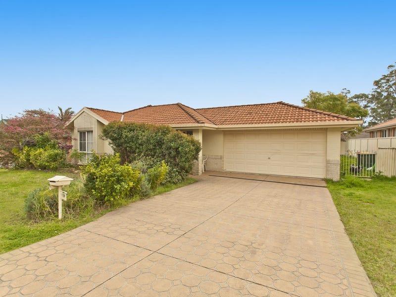 104 Kindlebark Drive, Medowie, NSW 2318