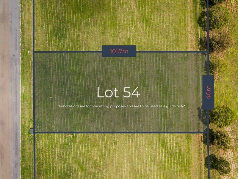 Lot 54, Queen Street, Muswellbrook, NSW 2333