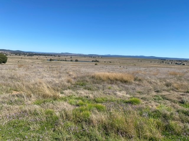 Lot 309, Raleigh Road, Silver Spur, Qld 4385