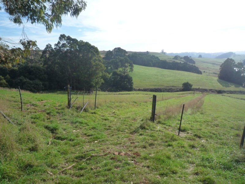 RA South Riana Road, Upper Natone, Tas 7321