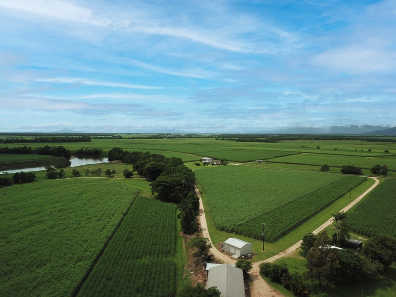 238 Davidson Road, Tully, Qld 4854