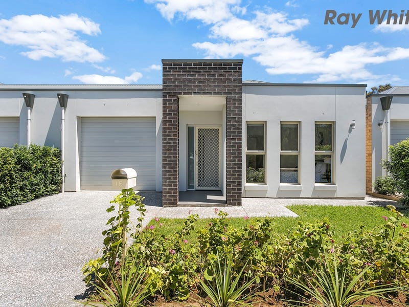 16 Midera Avenue, Edwardstown, SA 5039