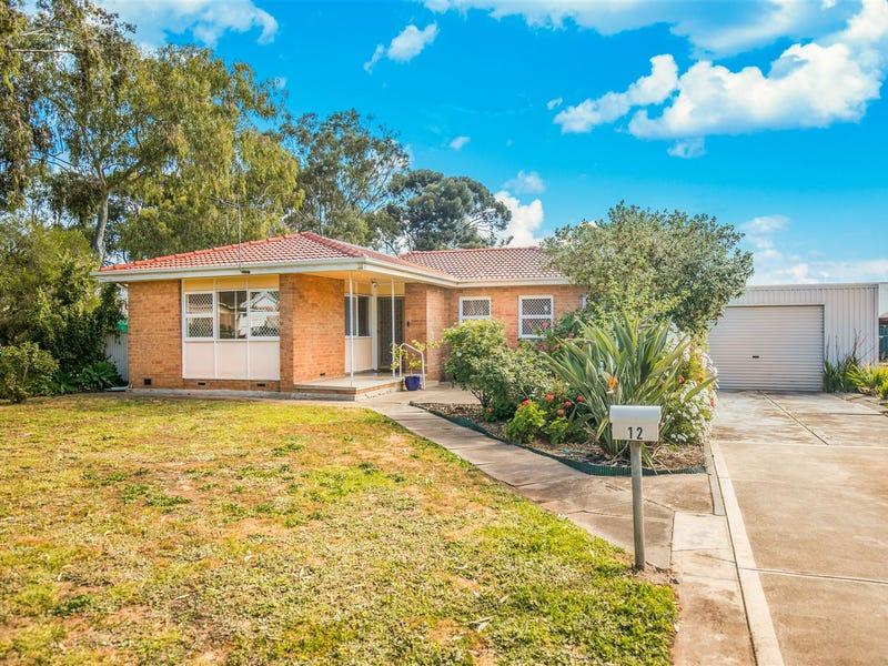 12 Naomi Terrace, Pasadena, SA 5042