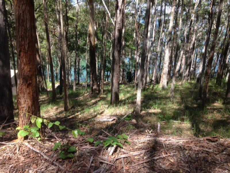 Lot 29, 23 New Forster  Rd, Smiths Lake, NSW 2428