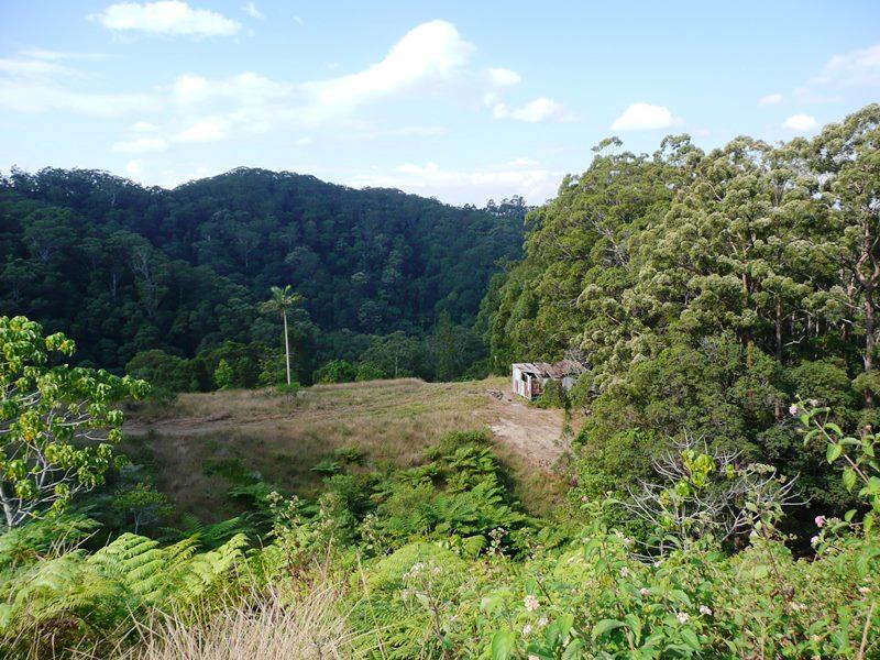 260 Cudgera Creek Road, Cudgera Creek, NSW 2484