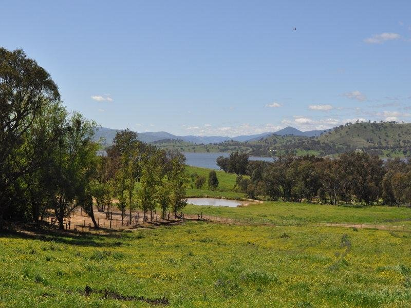 56 Hawkesview Road, Wirlinga, NSW 2640