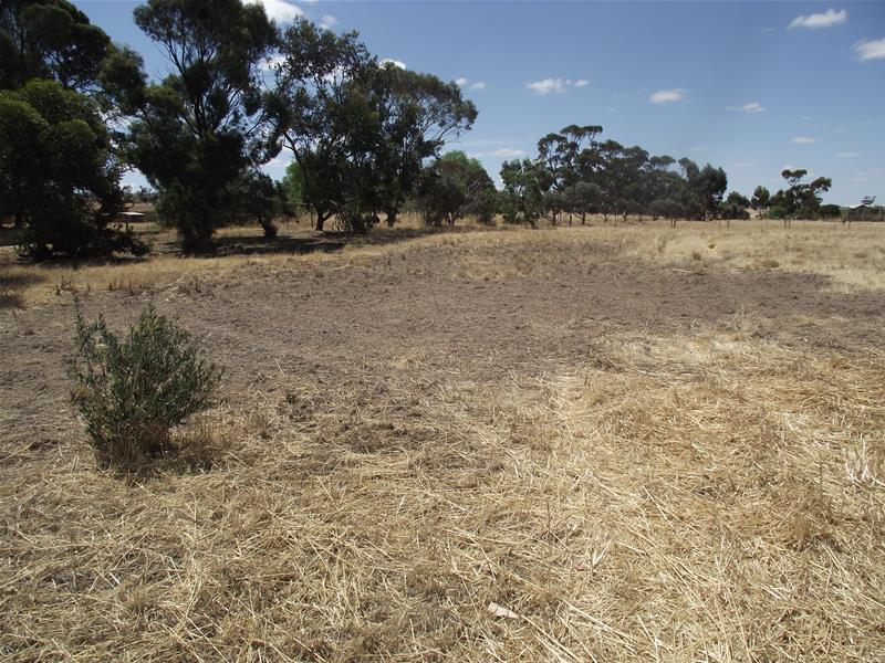 Lot/1 Lot 1 St Kitts Road, Dutton, SA 5356