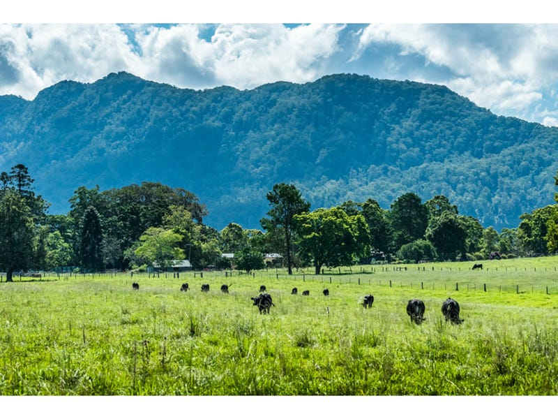 285 Roses Road, Bellingen, NSW 2454