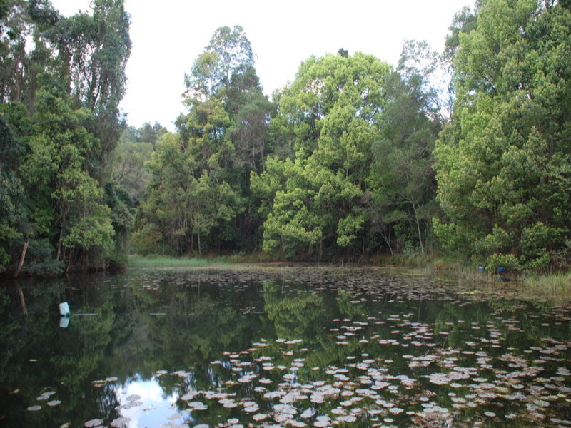 Address available on request, Chowan Creek, NSW 2484