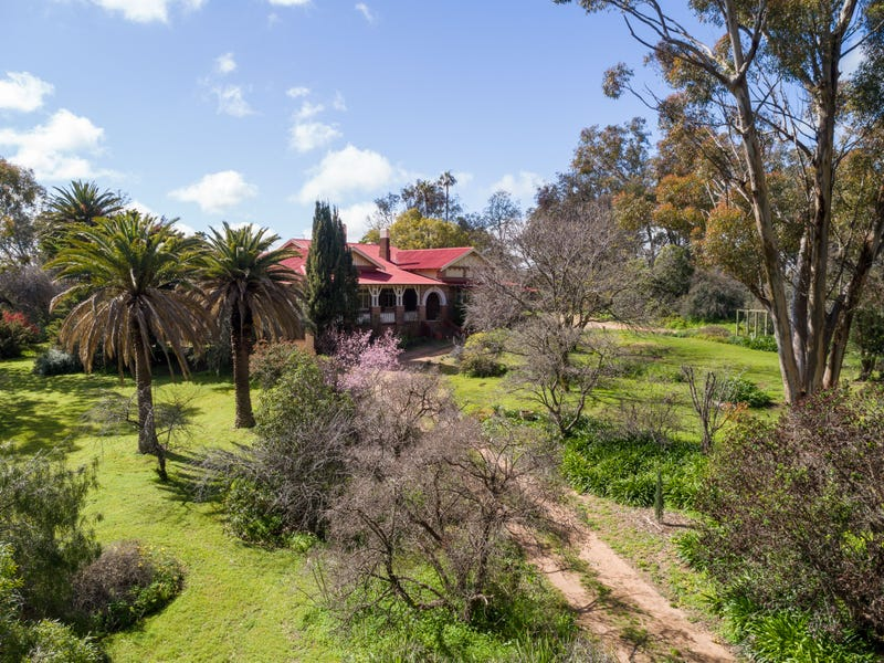 3270 MOPPITY ROAD, Young, NSW 2594