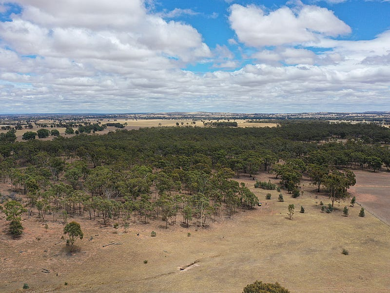 00 Fentons Creek - Whela Road, Fentons Creek, Vic 3518