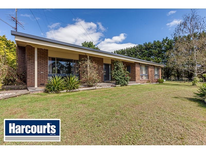 51 Beards Track, Shady Creek, Vic 3821