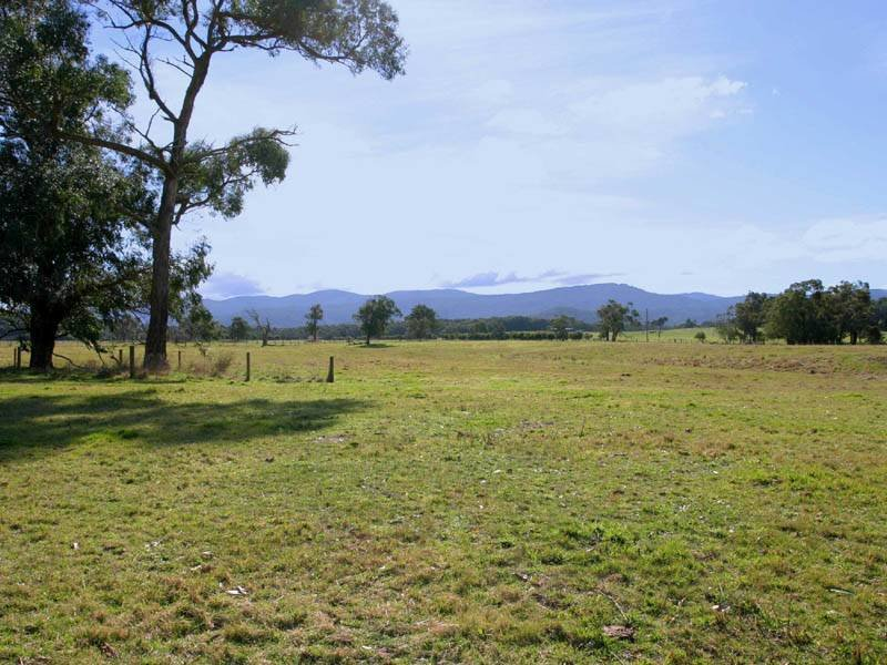580 Ellis Road, Tonimbuk, Vic 3815