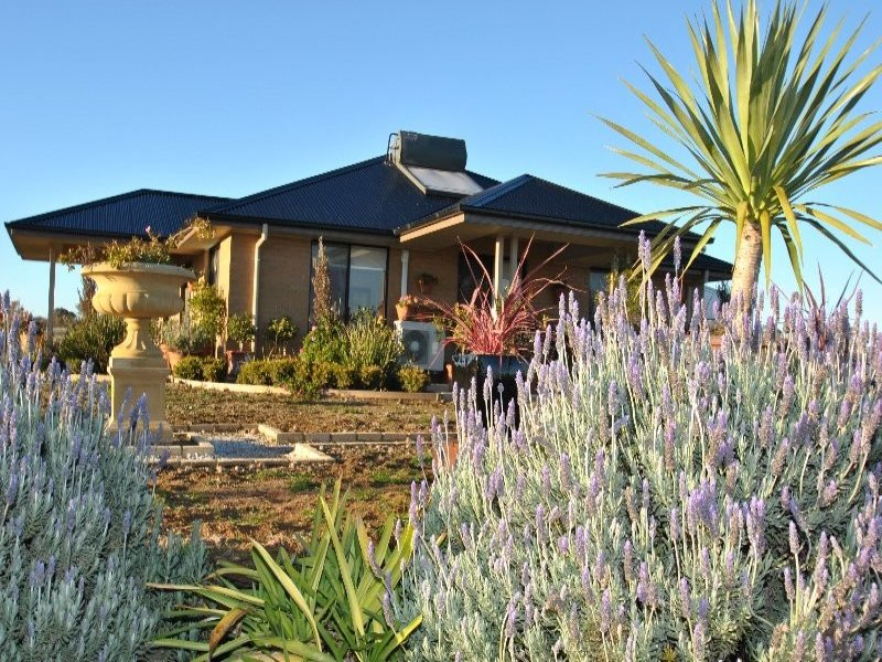 722 Amaroo Road, Borenore, NSW 2800