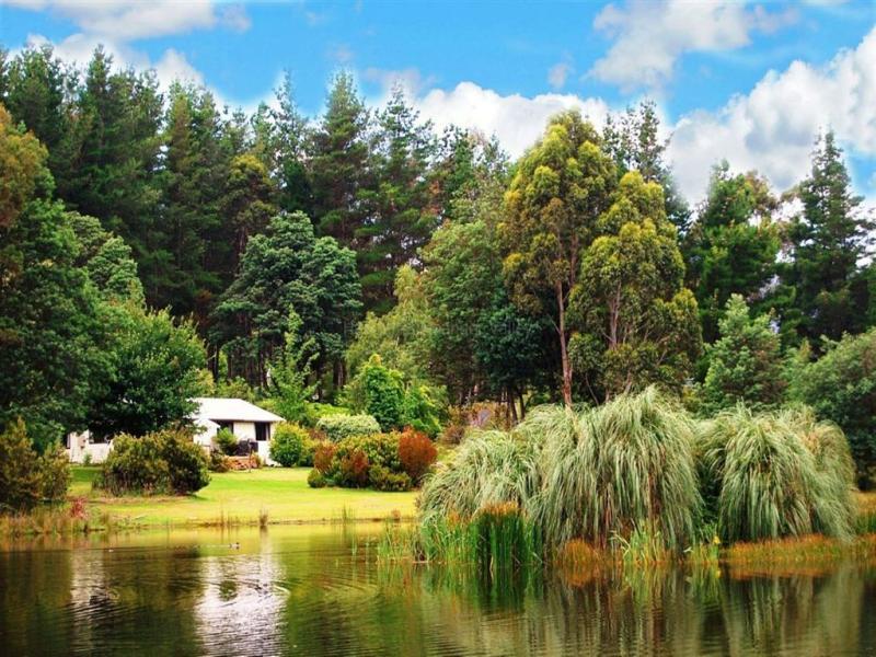 13515 Highland Lakes Road, Golden Valley, Tas 7304