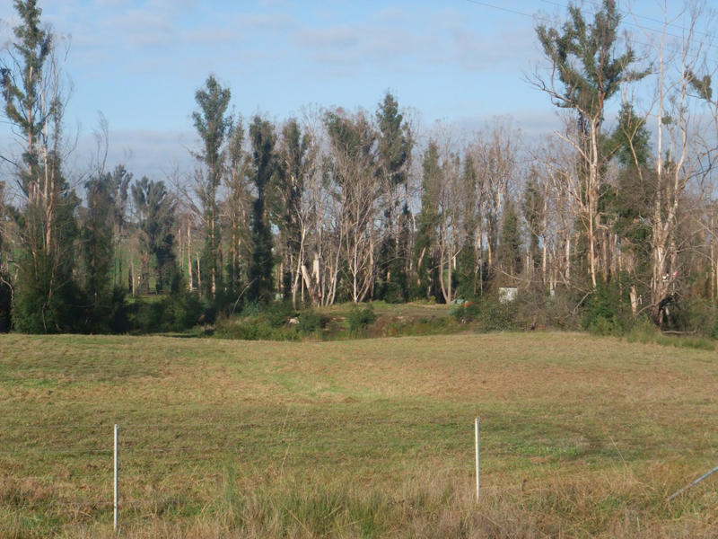 20 Chadds Creek Road, Strathewen, Vic 3099