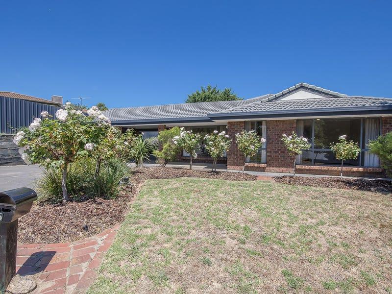5 Flora Court, Flagstaff Hill, SA 5159
