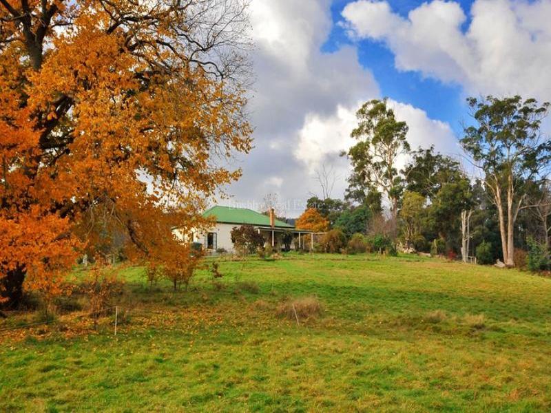 180 Greaves Road, Flowery Gully, Tas 7270