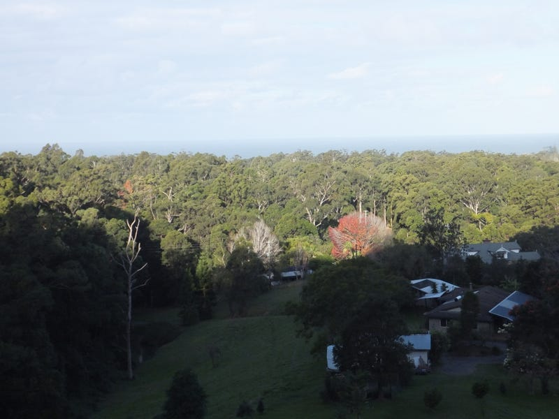 Lot 203 Korora Basin Road, Korora, NSW 2450