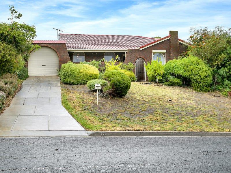 17 Gollop Crescent, Redwood Park, SA 5097