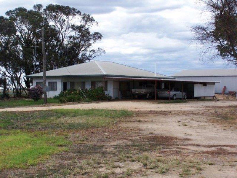 . Farm 61, Coleambally, NSW 2707
