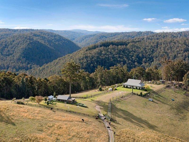478 Brush Creek Road, Cedar Brush Creek, NSW 2259