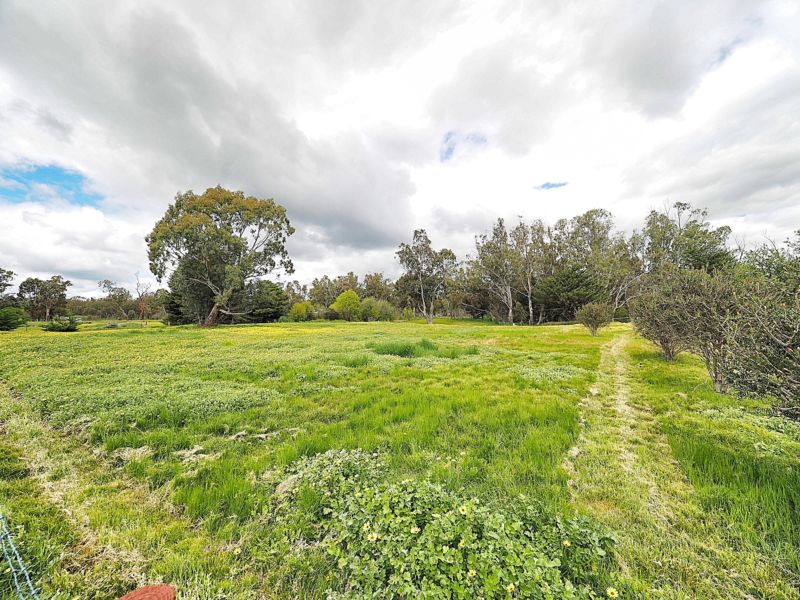 91 Blindcreek Road, Elmhurst, Vic 3469