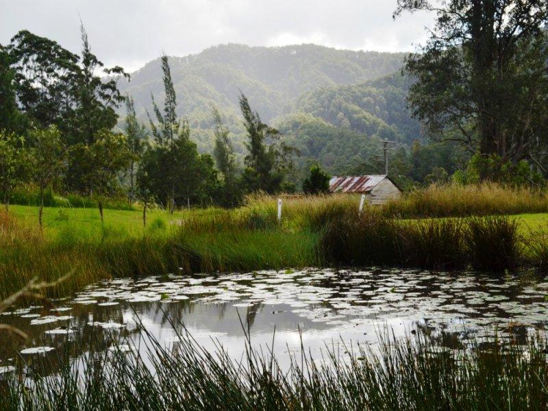 1876 Mooral Creek Rd, Mooral Creek, NSW 2429