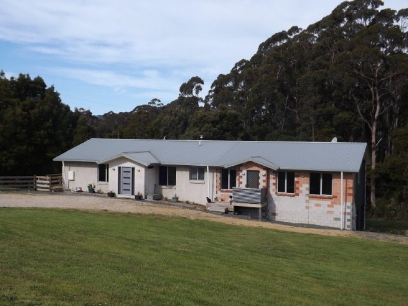 54 Tippetts Road, Mount Hicks, Tas 7325