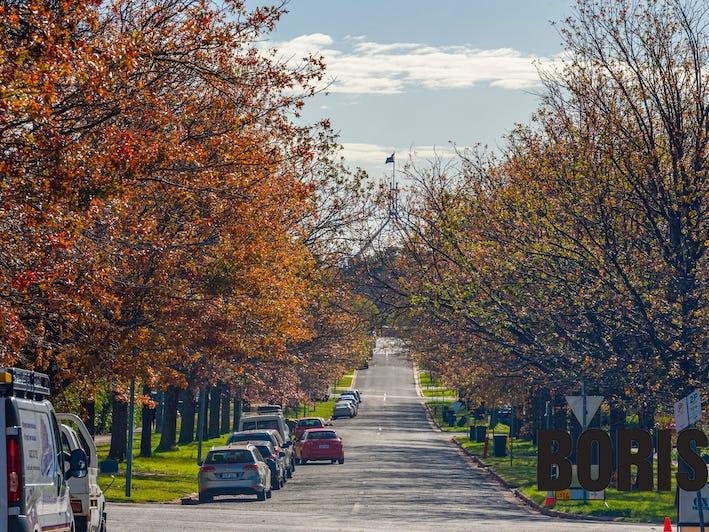 74 Leichhardt Street, Griffith, ACT 2603