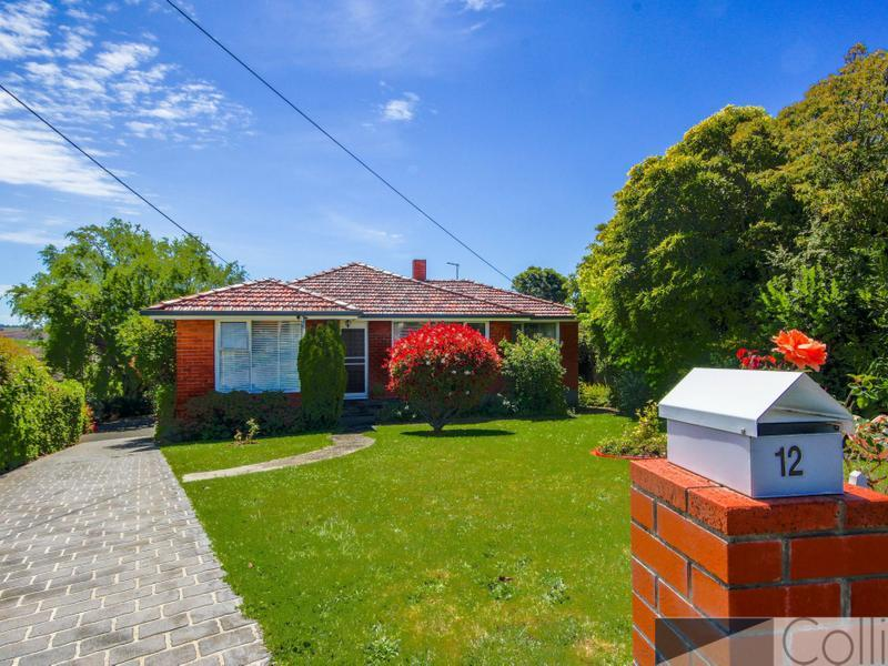 12 Haines Place, Devonport, Tas 7310